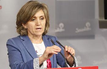 Luisa Carcedo durante su comparecencia