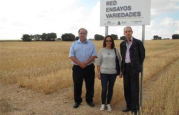 El ITAP incorpora 4 nuevas localidades a la red provincial de campos de ensayos 2014, Munera, Almansa, Villamalea y El Ballestero