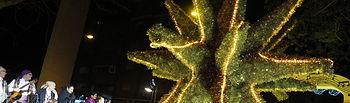 Cabalgata de los Reyes Magos en Albacete